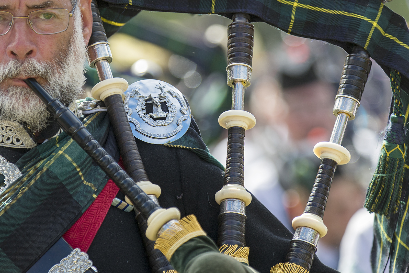 Piper in a Scottish Pipe Band